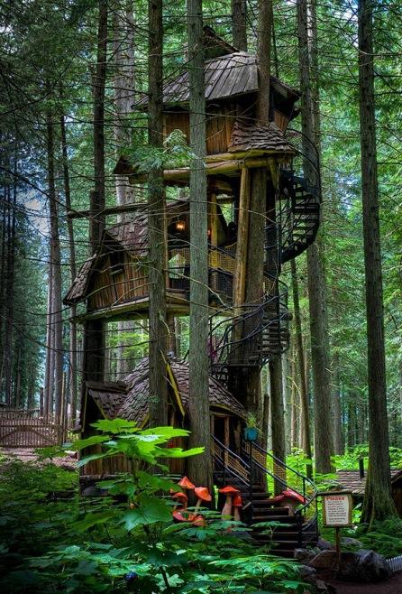 Three Story Treehouse in British Columbia, Kanada